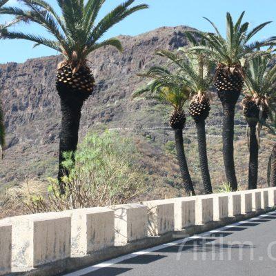 roads_locations_7ifilm_19